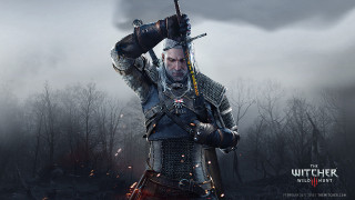 Арт The Witcher 3: Wild Hunt / Картинка 1