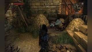 Скриншоты The Witcher 2: Assassins of Kings / Картинка 63