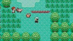 pokemon emerald version коды