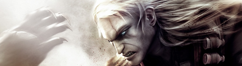 Игры как Witcher: Rise of the White Wolf - похожие