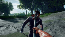 Culling похожа на Chivalry: Medieval Warfare
