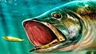 Ultimate Fishing Simulator похожа на Fishing Sim World