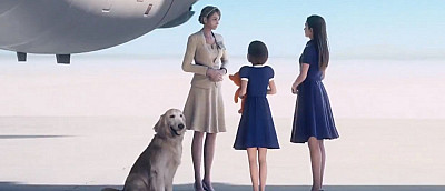 Геймеры узнали, что собака из Ace Combat 7 — это статичная картинка. Фанаты умирают со смеху