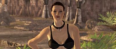 Игрок переспал со всеми персонажами в Fallout: New Vegas за рекордно короткое время — видео
