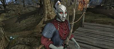 Мод Rebirth для Morrowind, полностью меняющий мир игры, получил самое большое обновление в истории