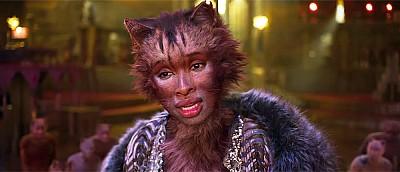 Николас Кейдж-кот, обиженная Гермиона и другие шутки — как интернет отреагировал на новый фильм «Кошки»