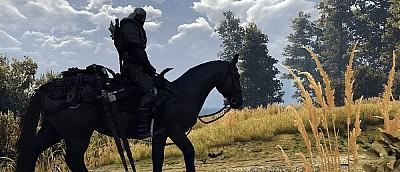Новый мод для The Witcher 3 делает Геральта более каноничным