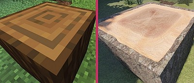 На видео сравнили обычную Minecraft и моды на реалистичную графику