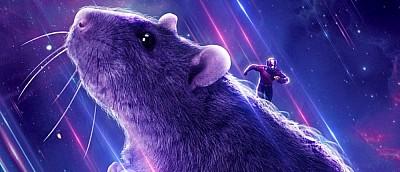 Новая теория фанатов «Мстителей» связана с крысой из последнего фильма
