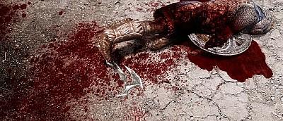 Моддер сделал Skyrim еще кровавее и зрелищнее — видео